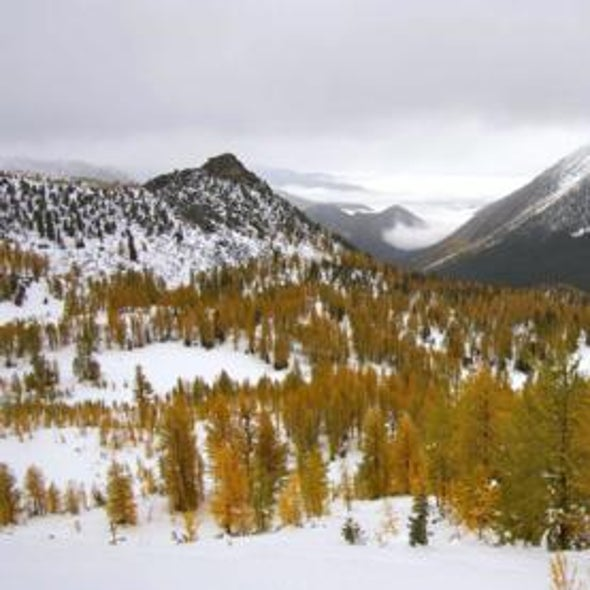 Warmer Springs Linked to Dwindling Snow in Rocky Mountains