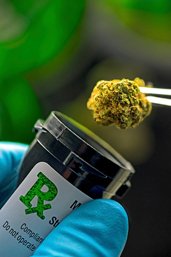 Marijuana Gears Up for Production High in U.S. Labs