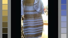 "How ""The Dress"" Became an Illusion Unlike Any Other"