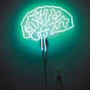 Controlling the Brain with Light