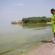 Trump Wants Deep Cuts in Environmental Monitoring