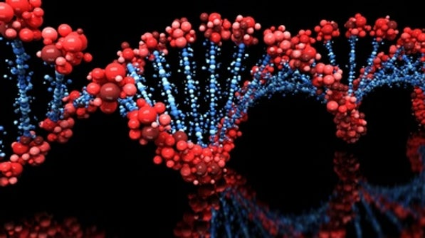 scientificamerican.com - Sharon Begley - Potential DNA Damage from CRISPR 'Seriously Underestimated,' Study Finds