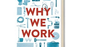 <em>Scientific American MIND</em> Reviews <i>Why We Work</i>