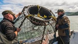 Ocean Acidification Threatens the U.S. Economy
