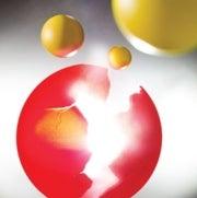 The Inner Life of Quarks