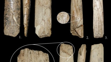 Modern Humans Used Ivory and Bone to Create Tools 30,000 Years Ago [Slide Show]