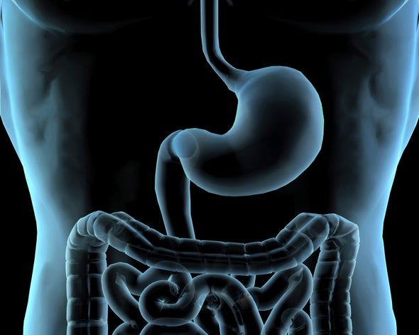 Better Gut Microbiome Census through Computing