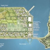 Treasure Island: Aerial Plan