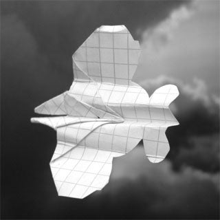 Flying on a Wing and ... Paper