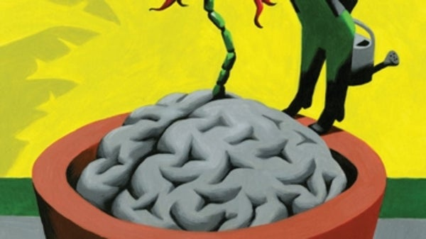 New Neurons In the Brain Keep Anxiety at Bay