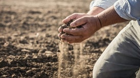 Can Soil Microbes Slow Climate Change?