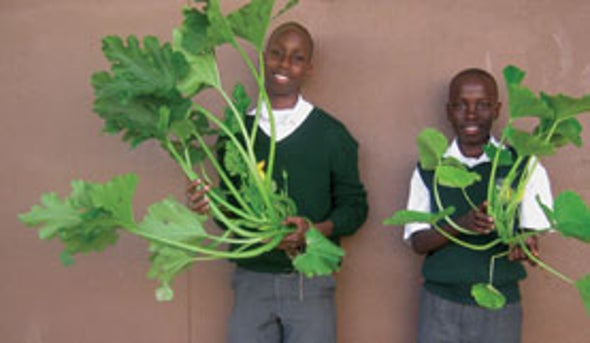 Teens Engineer a Way to Help Swazi Farmers