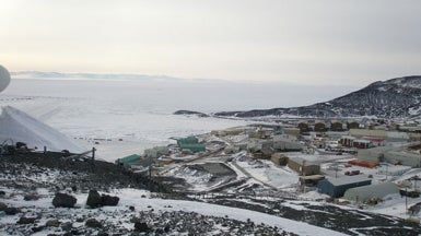 Antarctic Wilds Carry as Much Chemical Flame Retardants as Urban Rivers