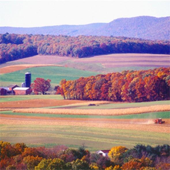 Farm Bill Politics May Prove Devastating to the Environment