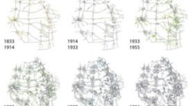 Grid Unlocked: How Street Networks Evolve as Cities Grow
