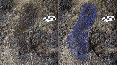 Could These Be the Oldest Human Footprints in North America?