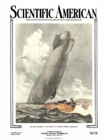 October 04, 1919