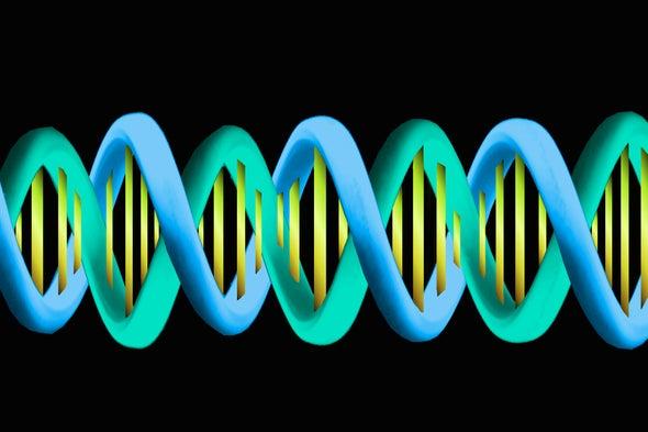 Ancient Clan War Explains Genetic Diversity Drop