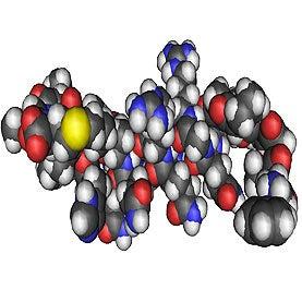 Narcolepsy Confirmed as Autoimmune Disease