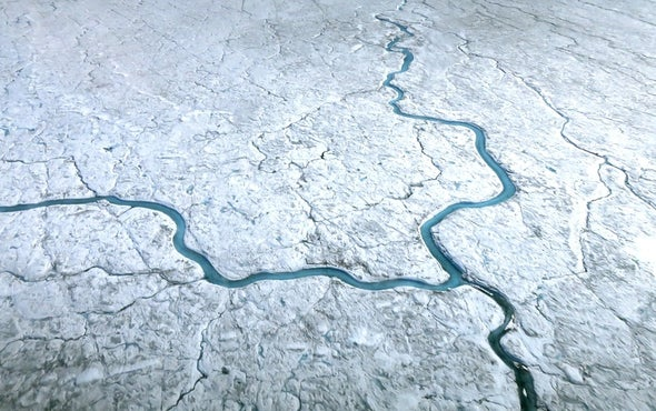 Algae Growth Speeds Up Greenland's Melting