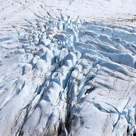 Advancing Alaskan Glacier Holds Clues to Global Sea Level Rise