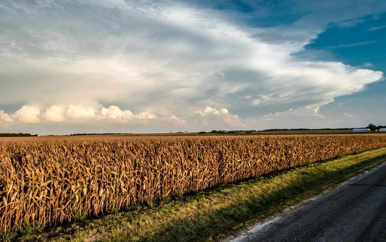 3 Ways Science Is Vital to the United States Department of Agriculture