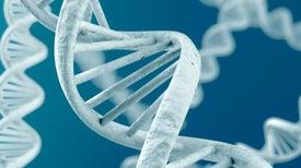 DNA Sequencing Speeds Up