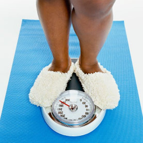 Weighing the Evidence: Studies Collide over How Aging Impacts Obesity Risk