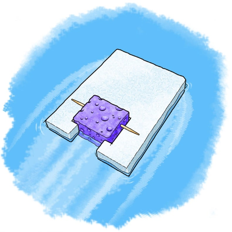 Surface Tension Science: Build a Raft Powered by Soap