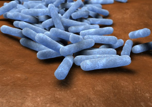 Alliance of Bacterial Strains Disables Antibiotics