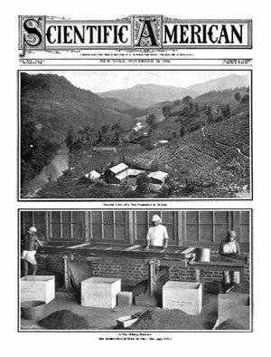 November 19, 1904