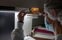 CureVac COVID Vaccine Letdown Spotlights mRNA Design Challenges