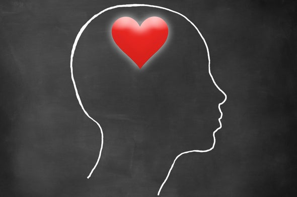 Your Brain In Love Scientific American
