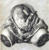 1774: <i>The Anatomy of the Human Gravid Uterus Exhibited in Figures</i>, by William Hunter
