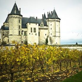 Located in the French town of Saumur, in the Maine-et-Loire département Saumur's castle exists since the Xth century.