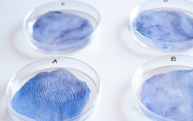 The Environment's New Clothes: Biodegradable Textiles Grown from Live Organisms - Scientific American