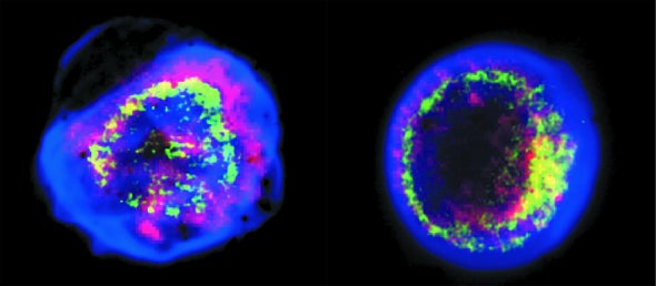Mapping the Remains of Supernovae