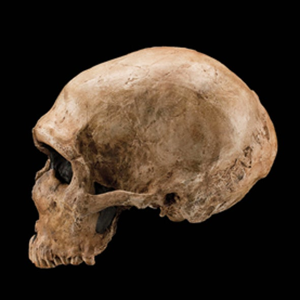 Volcanic Eruptions May Have Wiped Out Neandertals