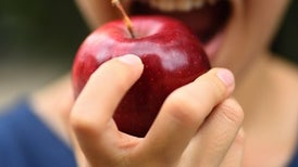 Genetically Modified Browning-Resistant Apple Reaches U.S. Stores