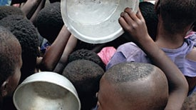 Could Food Shortages Bring Down Civilization?