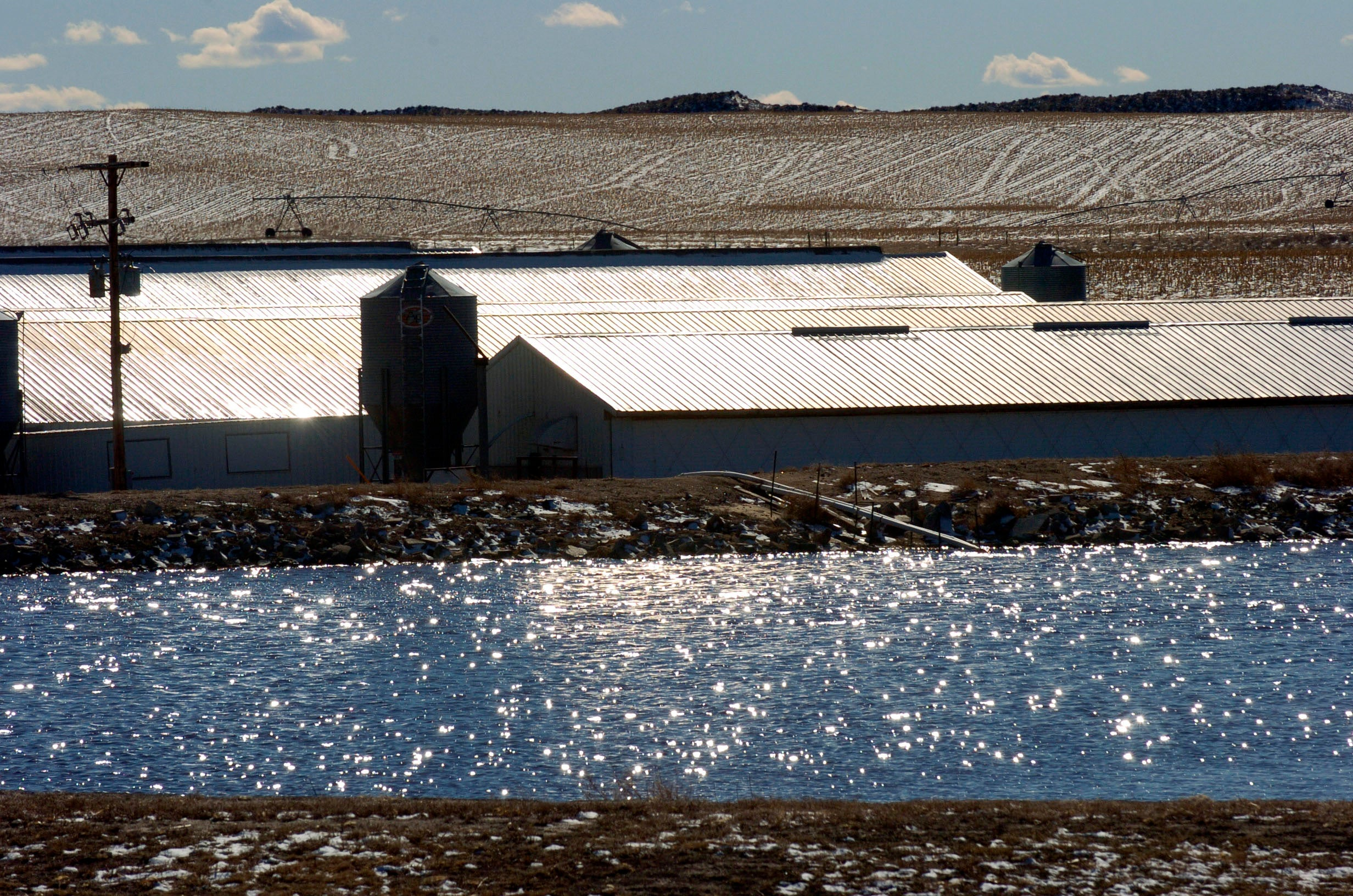 Gas Companies Want to Recycle Your Manure