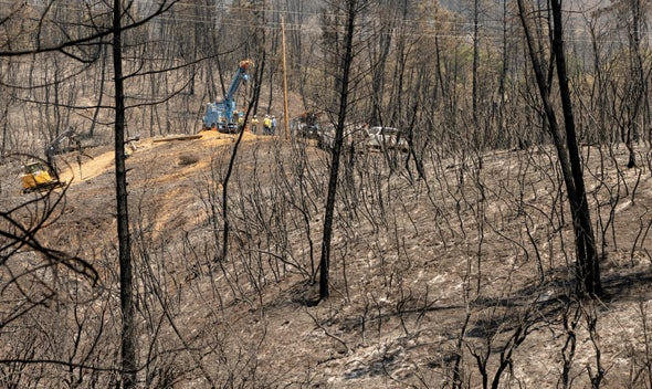 Soaring Temperatures and Wildfire Threaten California's Power Grid
