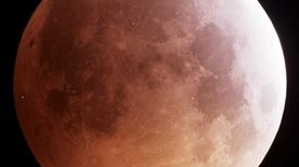 In a First, Earthlings Spot a Meteor Strike the Eclipse-Darkened Moon