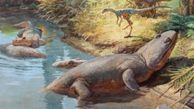 The Unlikely Triumph of Dinosaurs