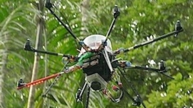 Camera-Equipped Autocopters Map Forest Treetops