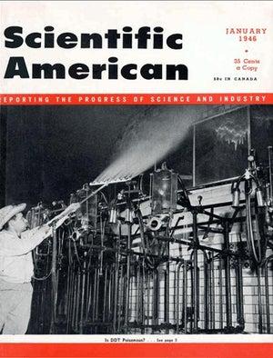 January 1946