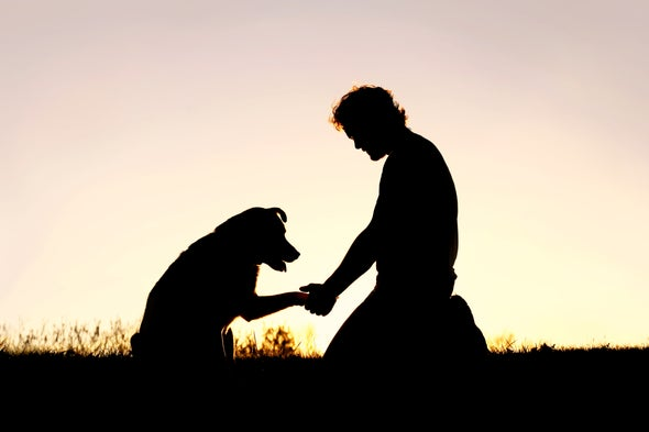 Why We Need to Take Pet Loss Seriously - Scientific American