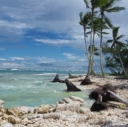 The Kiribati People Battle Sea Level Rise [Slide Show]