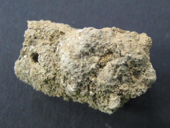 Preserved Poop is an Archaeological Treasure