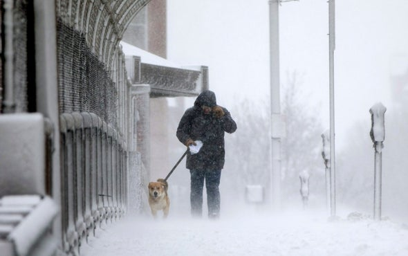 Arctic Warm Spells Linked to Nasty Winter Weather on East Coast